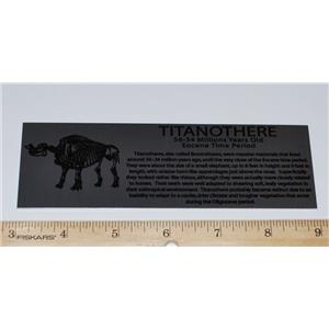 LABEL Large Titanothere Fossil Display 6 inches #10334 2o