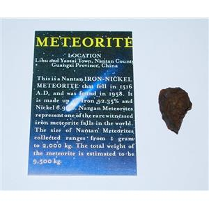 NANTAN IRON METEORITE with Color Information Card 11-20 gram size #10192 2o