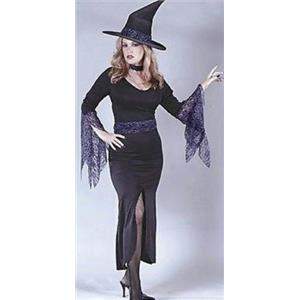 Fun World Women's Witches Brew Adult 4 Piece Witch Costume Size M/L 10-14