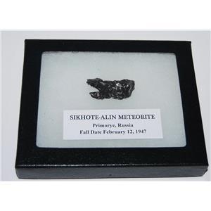 SIKHOTE-ALIN METEORITE 14.2 gm w/ Dipslay Box  & COA MDB #2512 12o