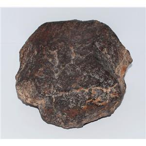 MOROCCAN Stony METEORITE Chondrite Genuine 1520 grams 3# 5.5oz w/ COA #3019