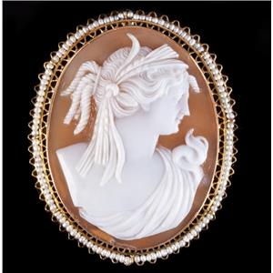Vintage 1920's 10k Yellow Gold Natural Shell & Pearl Cameo Brooch / Pendant