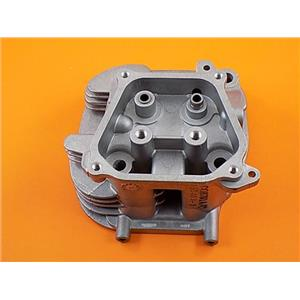 Generac Guardian 0G6791A RV Generator Cylinder Head W/ Valve Seats & Guides (Replaces 021714)
