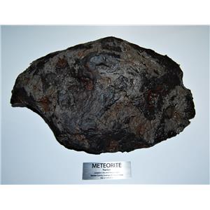 NANTAN IRON METEORITE -Genuine-13,280 grams 29# 14.5 oz w/Label & COA#13643 480o