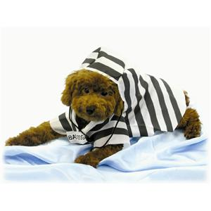 Prisoner Pet Halloween Costume Jail Bird Bad Dog