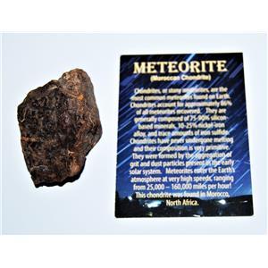 MOROCCAN Stony METEORITE Chondrite Genuine 120.7 grams w/Color Card #13865 7o