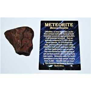 MOROCCAN Stony METEORITE Chondrite Genuine 115.5 grams w/Color Card #13867 7o