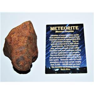 MOROCCAN Stony METEORITE Chondrite Genuine 269.0 grams w/Color Card #13876 13o
