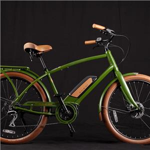 2019 Raleigh Electric Retroglide Royale iE Step Over Green ONE SIZE