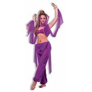 Desert Princess Belly Dancer Sexy Adult Costume