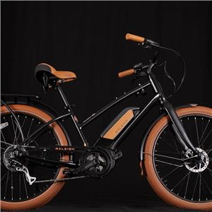 2019 Raleigh Electric Retroglide Royale iE Step Thru Black ONE SIZE