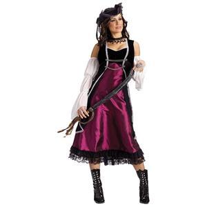 Pirate's Pleasure Sexy Adult Costume M/L