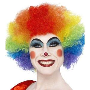 Crazy Clown Rainbow Afro Wig