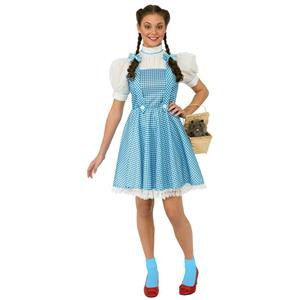Wizard of Oz: Dorothy Teen Costume Size 2-6