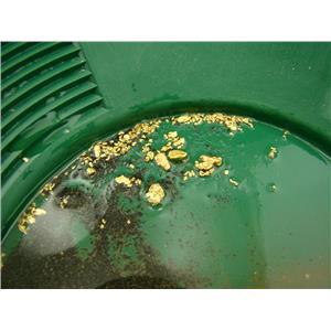 10 Lbs Yukon Gold Panning Paydirt - Sluice it, Pan it, Get Good Gold Everytime