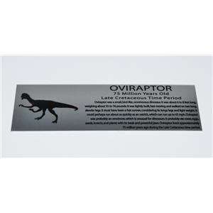 Oviraptor Fossil Large Metal Display Label 6x2 #11759 8o