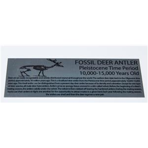 Deer Antler Fossil Large Metal Display Label 6x2 #11760 8o