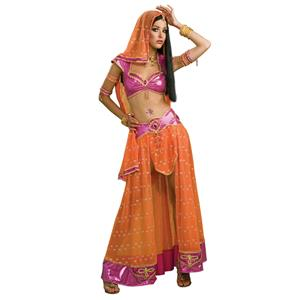 Secret Wishes Bollywood Belly Dancer Exotic Sexy Adult Costume Size Medium 6-10