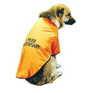 I Peed Penitentiary Got Busted Convict Pet Costume