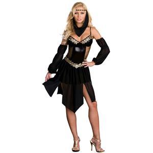 Dreamgirl Women's Sexy Harem Arabian Nights Girl Costume Adult Costume XS 0-2