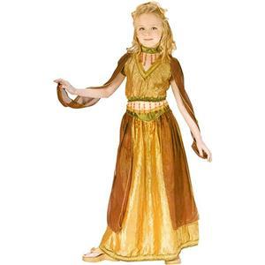 Fun World Girl's Arabian Princess Belly Dancer Child Costume Large 12-14