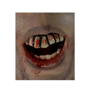 The Walking Dead Zombie Decay Bloody Teeth Adult Costume Accessory
