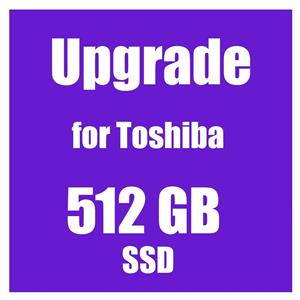 SSD Upgrade 512GB