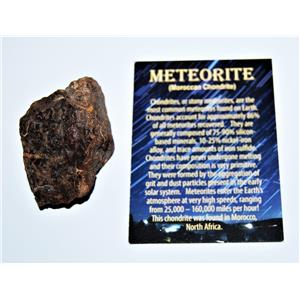 MOROCCAN Stony METEORITE Chondrite Genuine 120.7 grams w/Color Card #13865 7o