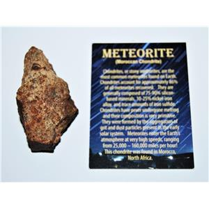 MOROCCAN Stony METEORITE Chondrite Genuine 134.7 grams w/Color Card #13869 8o