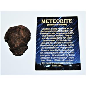 MOROCCAN Stony METEORITE Chondrite Genuine 77.9 grams w/Color Card #13870 6o