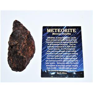 MOROCCAN Stony METEORITE Chondrite Genuine 223.2 grams w/Color Card #13874 11o