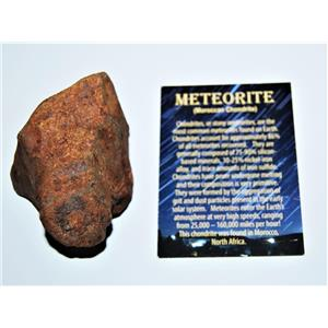 MOROCCAN Stony METEORITE Chondrite Genuine 269.0 grams w/Color Card #13876 13o