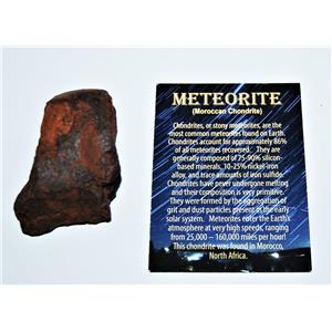MOROCCAN Stony METEORITE Chondrite Genuine 173.4 grams w/Color Card #13878 9o