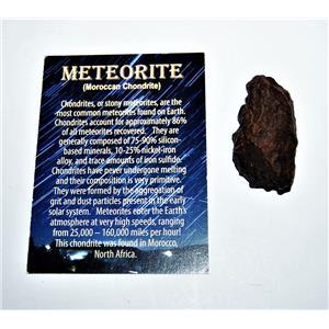 MOROCCAN Chondrite Stony METEORITE 41.0 gram w/COA & Color Card #14287 6o
