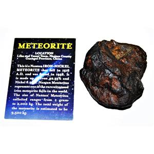 NANTAN IRON NICKEL METEORITE -Genuine-368.5 grams+ card & COA# 14355 16o
