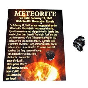 Sikhote Alin Russian Genuine Meteorite 4 to 5 gram size w/ Color Label #12860 2o