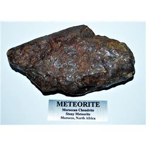 MOROCCAN Stony METEORITE Chondrite Genuine 317.9 grams w/metal label #14581 25o