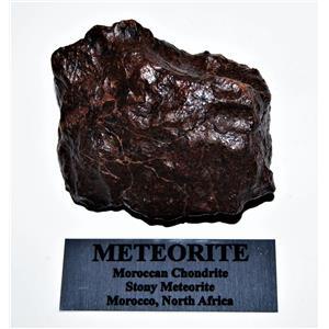 MOROCCAN Stony METEORITE Chondrite Genuine 300.5 grams w/metal label #14584 13o