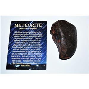 MOROCCAN Stony METEORITE Chondrite Genuine 158.7 grams w/color card #14591 9o