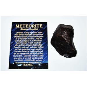 MOROCCAN Stony METEORITE Chondrite Genuine 130.4 grams w/color card #14592 8o