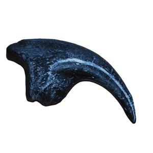 Allosaurus Dinosaur Toe Claw Cast #17 (Replica - Reproduction) 7o