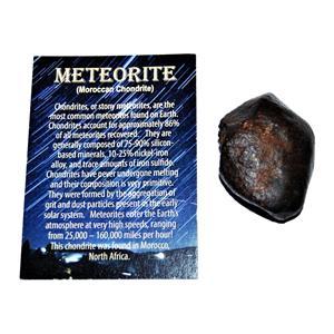 MOROCCAN Stony METEORITE Chondrite Genuine 71.1 grams w/color card #14638 6o