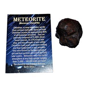 MOROCCAN Stony METEORITE Chondrite Genuine 66.7 grams w/color card #14645 6o