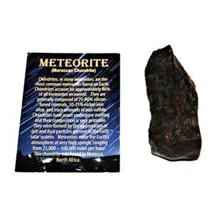 MOROCCAN Stony METEORITE Chondrite Genuine 151.0 grams w/color card #14652 9o