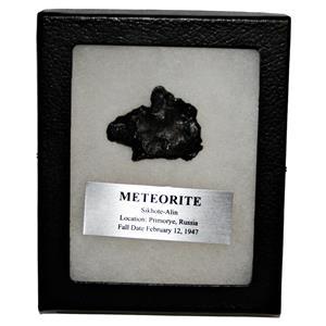 SIKHOTE-ALIN METEORITE 41.6 gm w/Dipslay Box  & COA SDB #14851 11o