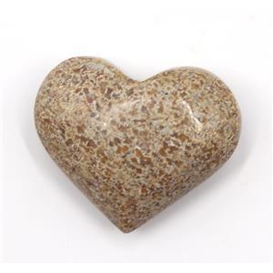 Polished Dinosaur Bone Fossil Heart Shape  4o #15155