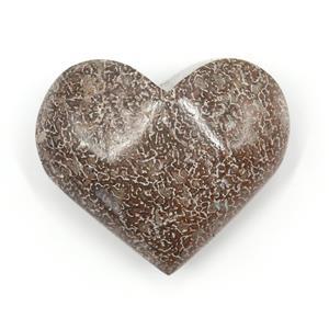 Polished Dinosaur Bone Fossil Heart Shape 4o #15156