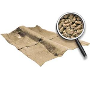 OER 62-67 Nova 2-Dr W/ 4-Speed MT Loop Carpet Set W/ Mass Backing Fawn/Sandalwood NC62672244