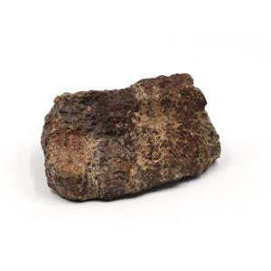 "MOROCCAN METEORITE ""B"" Grade Chondrite Genuine 158.7 grams w/color card 15496 9o"