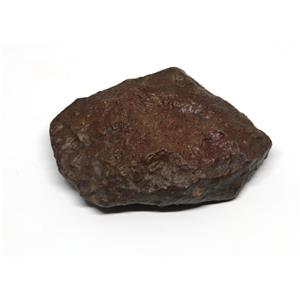"MOROCCAN METEORITE ""B"" Grade Chondrite Genuine 40.9 grams w/color card 15497 5o"